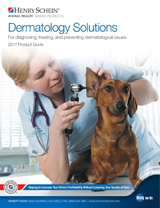 2017 dermatology solutions